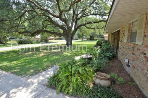 3802 Epperson Street Photo 1