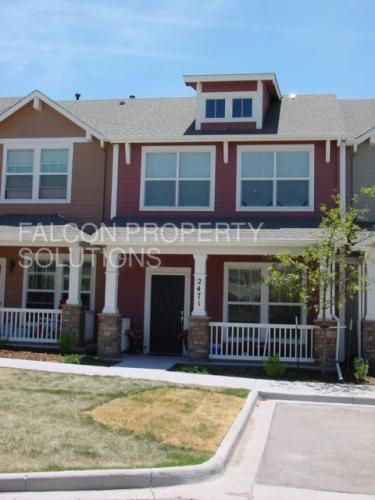 2477 Obsidian Forest View Photo 1