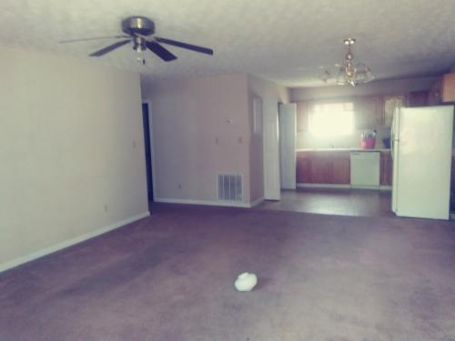 137 Anzie Way Photo 1