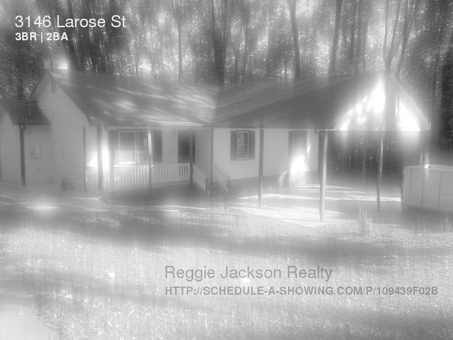 3146 Larose Street Photo 1