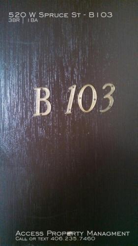 520 W Spruce Street #B103 Photo 1