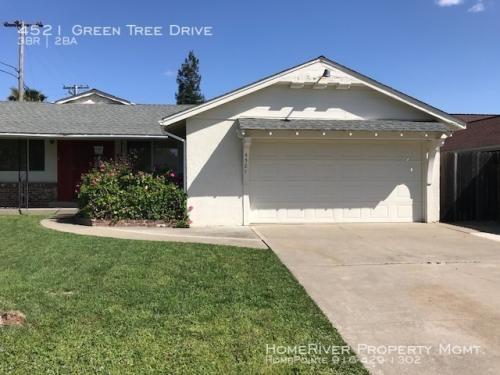 4521 Green Tree Drive Photo 1
