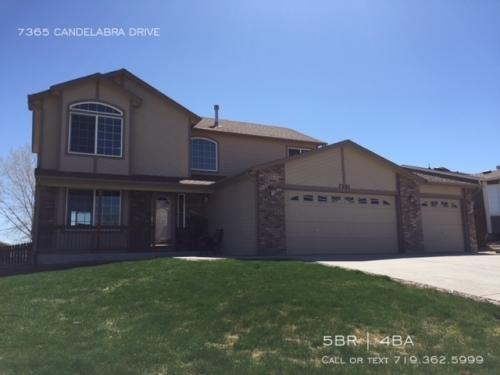 7365 Candelabra Drive Photo 1