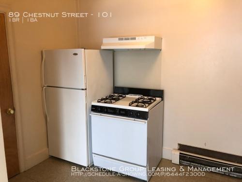 89 Chestnut Street #101 Photo 1