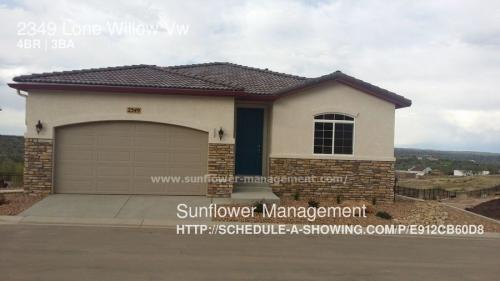 2349 Lone Willow View Photo 1