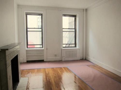 413 E 87th Street #5 Photo 1