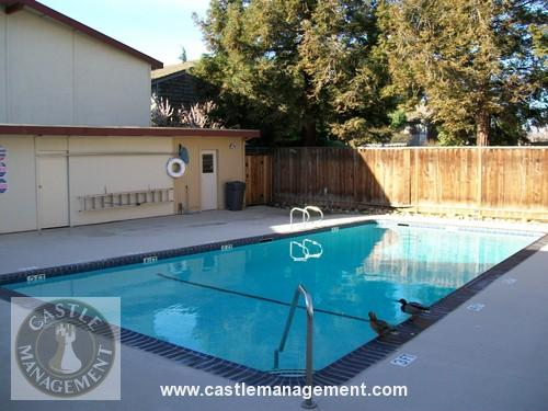 3066 willow pass road concord ca 94519 hotpads - One bedroom apartments in concord ca ...