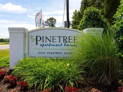 Pinetree Apartments Photo 1