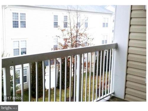 42492 Mayflower Terrace #304 Photo 1