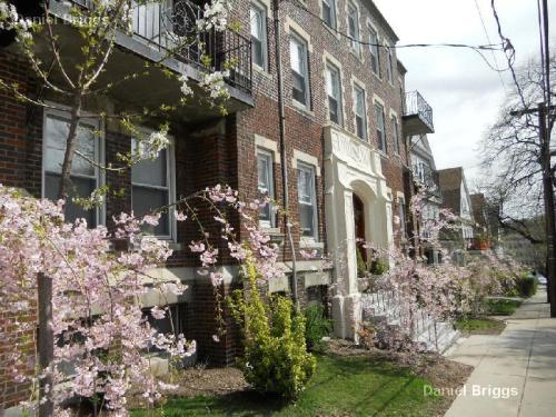 40 Quint Avenue Photo 1