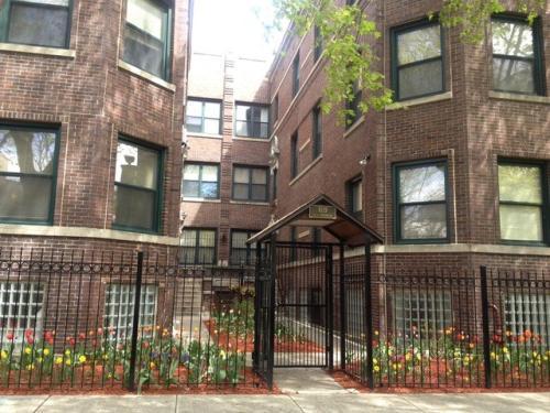6119 S Greenwood Ave 3 Photo 1