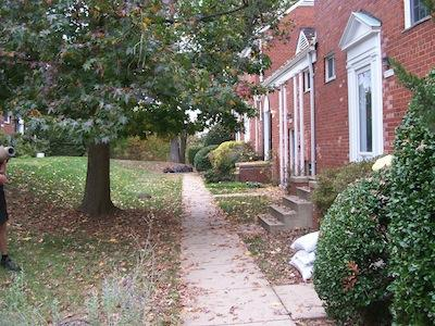 3470 Martha Custis Drive Photo 1